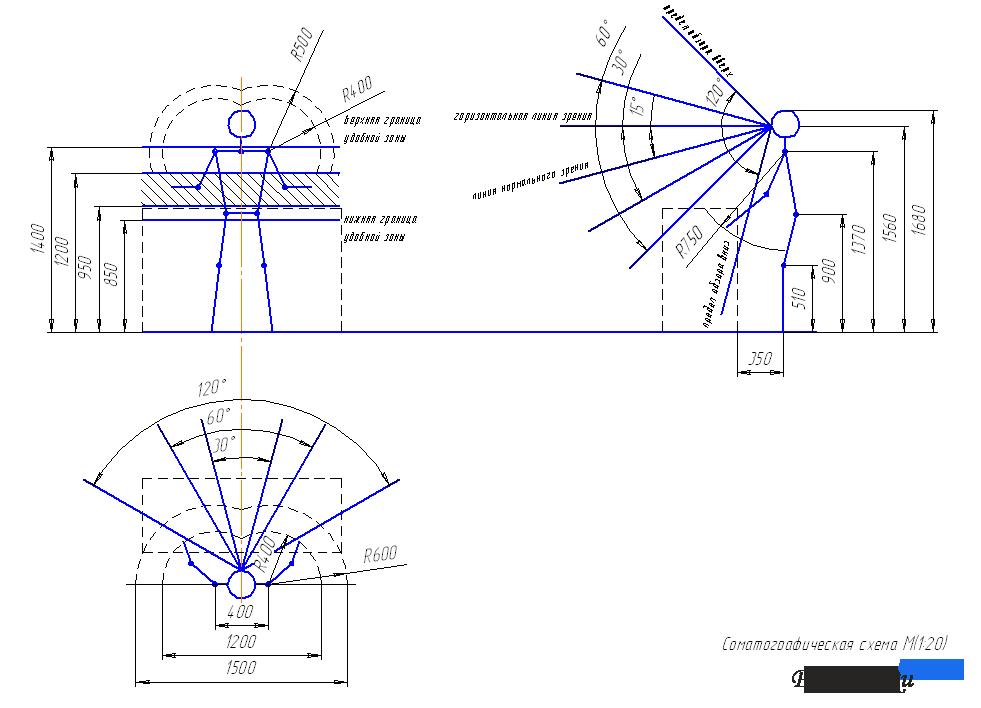 Соматографическая схема (ОХК и
